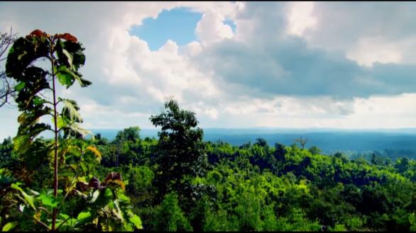 Природа в Бирме