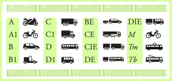 Новое в законодательстве: водительские права категории B1 – что это?